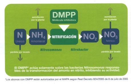 Nitrogeno amoniacal formula